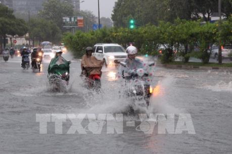 Meinhardt: Tồn đọng trong dự án giải quyết ngập do triều tại Tp Hồ Chí Minh