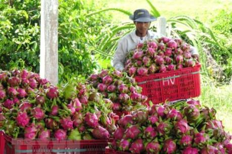 EVFTA sẽ mở ra cơ hội cho nông sản Việt Nam