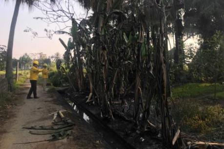 Khắc phục sự cố tràn dầu ở Thanh Hóa