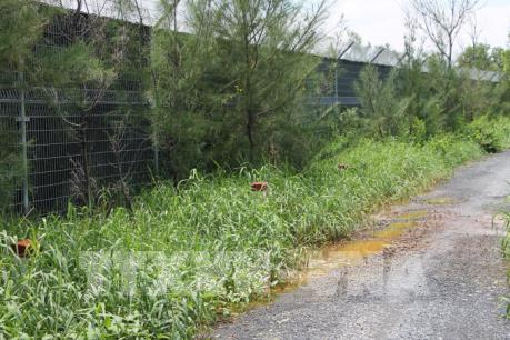 Thu hồi đất để trồng cây xanh cách ly bãi rác Đa Phước, TP.HCM