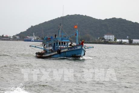 """Khắc phục """"thẻ vàng"""" IUU: Việt Nam có nhiều tiến bộ và đang đi đúng hướng"""