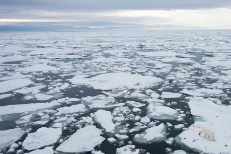 Mỗi giây có tới 14.000 tấn nước từ băng ở Bắc Cực đổ ra đại dương