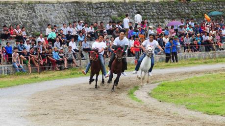 Bổ sung Dự án Trường đua ngựa vào Quy hoạch Hà Nội