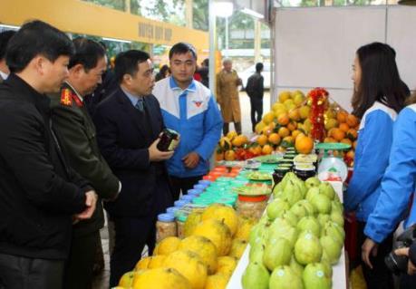 Khai mạc Hội chợ cam Vinh – Nghệ An năm 2018