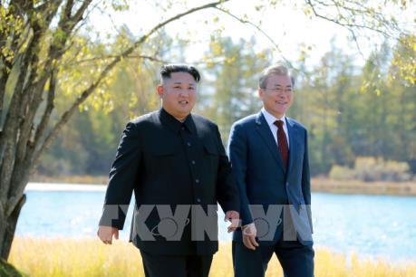 """Kinh tế Hàn Quốc sẽ """"cất cánh"""" trong năm 2019? (Phần 2)"""