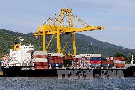 Vinalines Logistics sẽ đẩy mạnh dịch vụ vận tải quốc tế