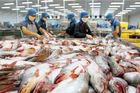 Vĩnh Hoàn góp 45% vốn lập công ty sản xuất giống cá tra