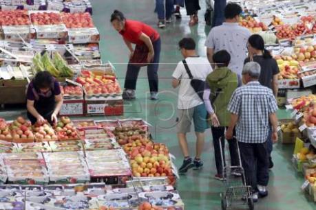 Hàn Quốc chính thức cấm siêu thị cung cấp túi ni lông cho khách hàng