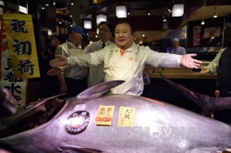 Nhật Bản: Cá ngừ khổng lồ được bán với giá kỷ lục