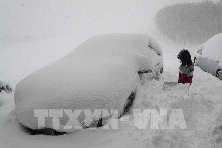 Giao thông tại nhiều nước châu Âu rối loạn do tuyết