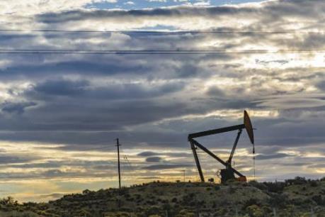 Shell phát triển quy mô lớn các mỏ dầu khí tại Argentina