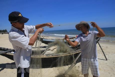 Một doanh nghiệp được cấp phép xuất khẩu cá nóc