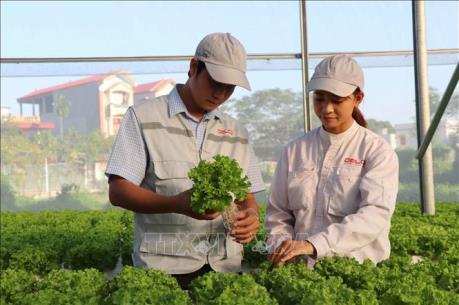 Đổi mới kiểm tra chuyên ngành nông nghiệp