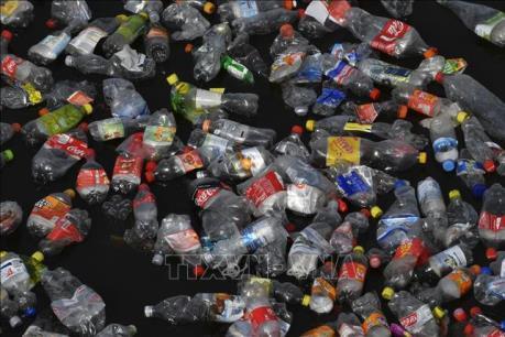 Môi trường sống ở Đông Nam Á có nguy cơ xuống cấp vì rác thải