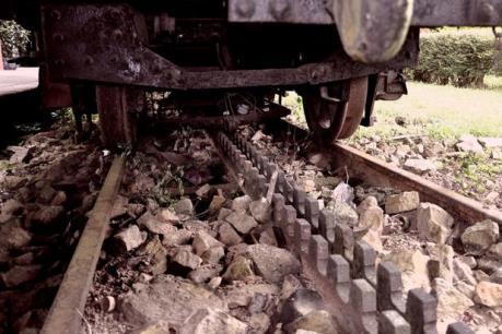 Lâm Đồng khôi phục tuyến đường sắt răng cưa Tháp Chàm - Đà Lạt
