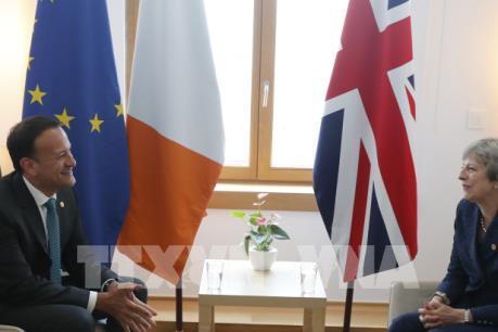 EU không có kế hoạch họp thượng đỉnh khẩn về Brexit