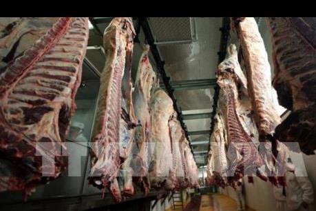 Hàng loạt cơ sở chế biến thực phẩm ở Mỹ ngừng hoạt động do COVID-19