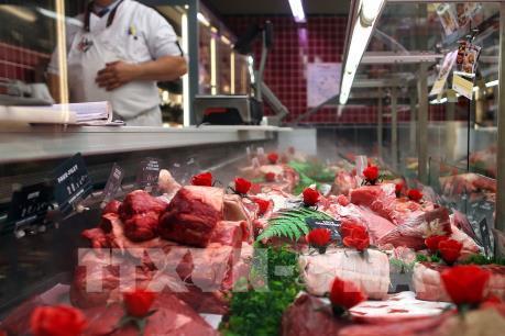 Nghiên cứu cơ chế lây truyền của COVID-19 trong chuỗi cung ứng thịt bò
