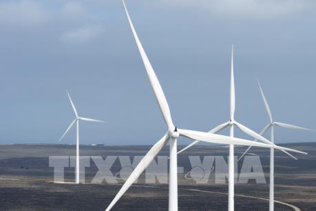 Tiềm năng phát triển năng lượng tái tạo ở Nam châu Phi (Phần 1)