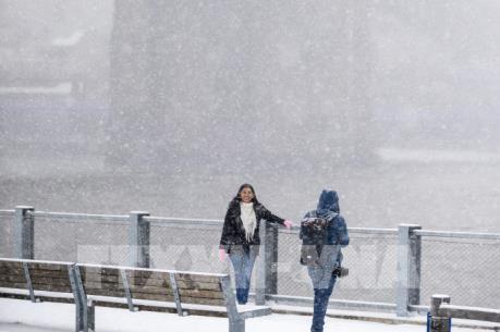 Mỹ: Bão tuyết khiến hơn 1.000 chuyến bay phải hủy bỏ