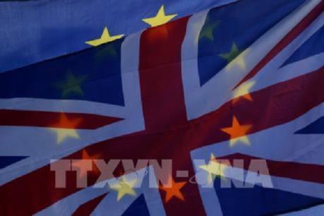 Ba bộ trưởng Anh sẽ ủng hộ hoãn Brexit nếu không đạt được thỏa thuận vào tuần tới