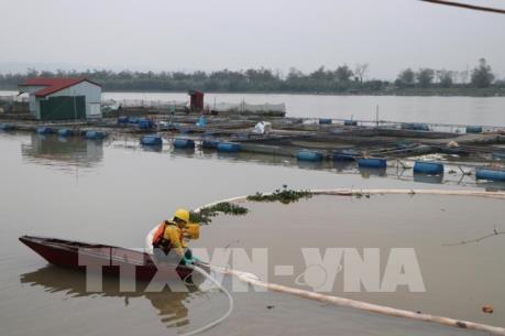 Gom được 85% lượng dầu tràn sau sự cố tràn dầu trên sông Kinh Thầy