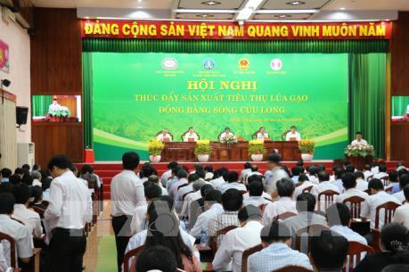 Ngân hàng dành gần 100.000 tỷ đồng cho thu mua tạm trữ lúa gạo Đông Xuân