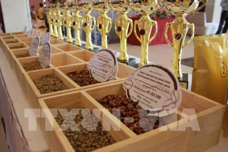 Tầm quan trọng của cơ chế bình ổn giá trên thị trường cà phê quốc tế