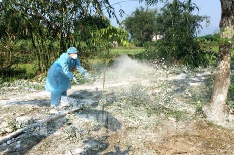 Quảng Ninh lập chốt liên huyện kiểm soát dịch tả lợn châu Phi