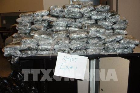Mỹ tịch thu vụ cocain kỷ lục tại New York