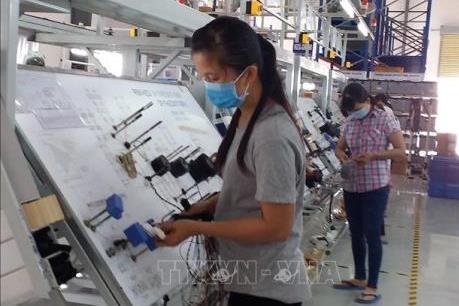 Hàn Quốc dẫn đầu về đầu tư nước ngoài tại tỉnh Bà Rịa - Vũng Tàu