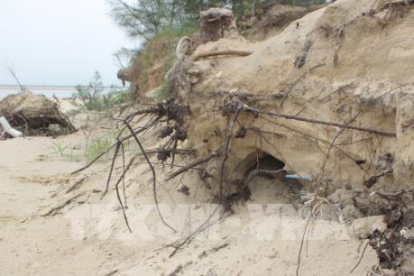 """Nỗi lo biển """"nuốt"""" làng Hà Tĩnh"""
