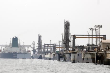 Thị trường dầu mỏ có tuần khởi sắc nhờ nỗ lực cắt giảm sản lượng