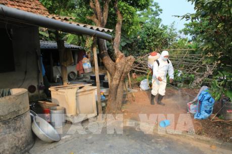 Thừa Thiên - Huế trực 24/24 giám sát chặt ổ dịch tả lợn châu Phi