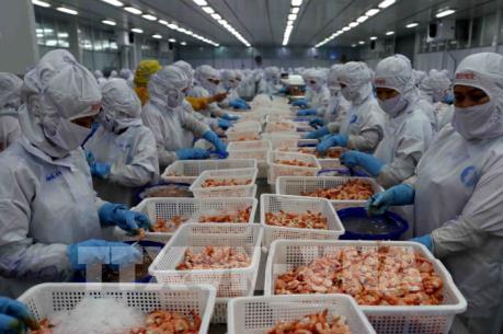 Doanh nghiệp thận trọng khi giao dịch thương mại tại Pakistan