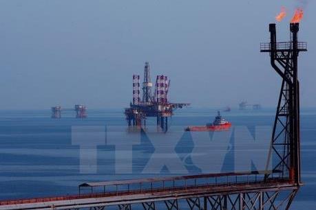 Bà Rịa-Vũng Tàu hỗ trợ tối đa cho doanh nghiệp Nga đến đầu tư