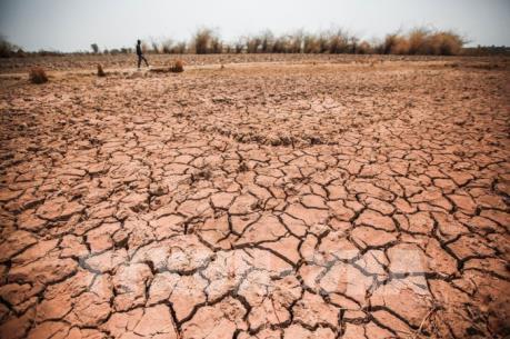 Tây Nguyên chủ động nguồn nước ứng phó với khô hạn