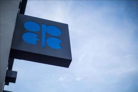 OPEC và Nga: Ranh giới giữa hợp tác và hội nhập
