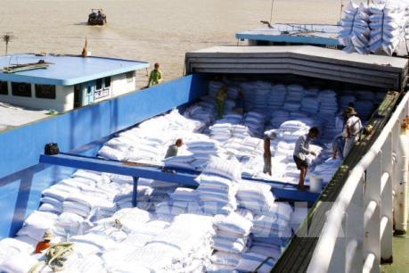 182 thương nhân được cấp chứng nhận đủ điều kiện kinh doanh xuất khẩu gạo