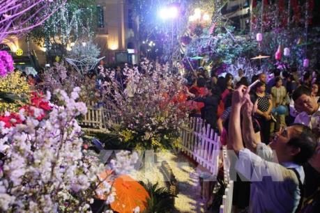 Quan hệ Việt Nam-Nhật Bản: Bài 1- Dấu ấn Lễ hội hoa anh đào lớn nhất thế giới