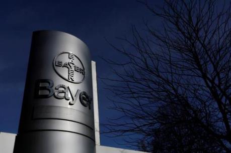 Công ty hóa chất Bayer bị tấn công mạng trong hơn một năm qua