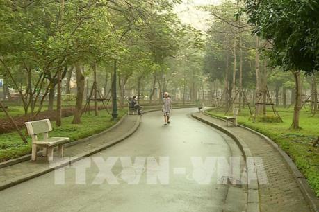 Tại sao cứ phải lấy đất công viên làm bãi đỗ xe?
