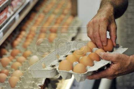 Australia thu hồi trứng gà do lo ngại nhiễm khuẩn salmonella