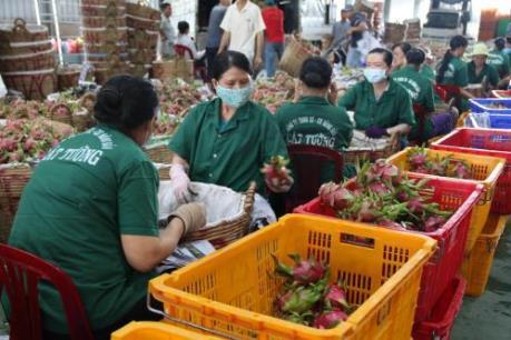 4 tháng, xuất khẩu nhóm các mặt hàng nông sản chính giảm 5,6%