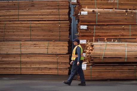 WTO ủng hộ Canada về thuế nhập khẩu gỗ mềm