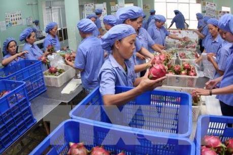 Xuất khẩu rau quả tăng 3,9%