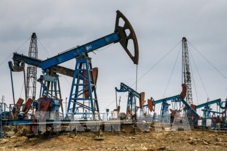 Giá dầu Brent giảm trong phiên hôm nay 15/4