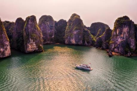 Quảng Ninh bác tin du thuyền có khách nhiễm virus Corona ghé vịnh Hạ Long