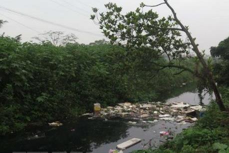 Hà Nội: Nguồn nước sản xuất nông nghiệp ô nhiễm nghiêm trọng