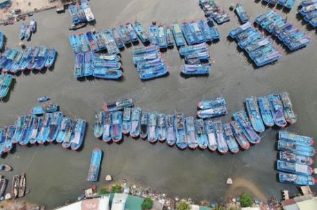 Tỉnh Bình Định dành cơ chế đặc thù cho thị xã Hoài Nhơn